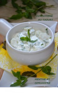 SALADE-COCOMBRE-YAOURT-1