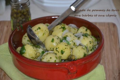 salade de pommes de terre aux herbes et câpres