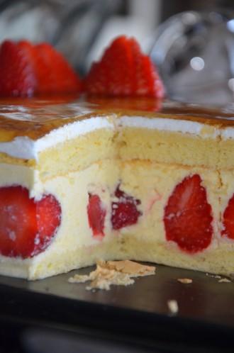 fraisier 13