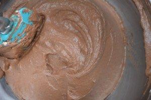 entremet croustillant chocolat praliné 4
