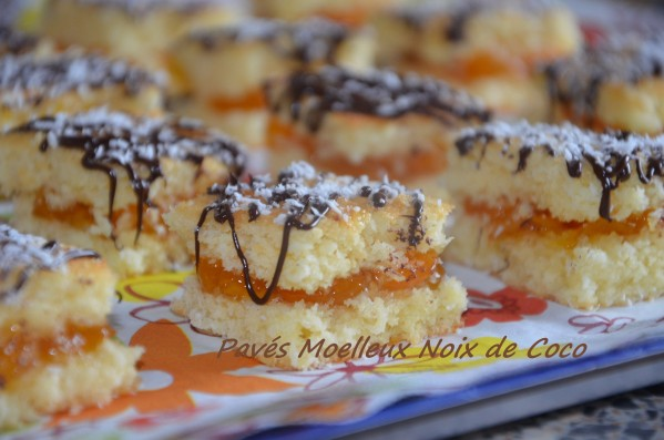 paves-moelleux-noix-de-coco-2