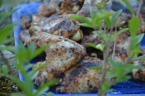 ailes de poulet marinées à l'indienne