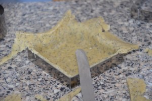 pâte brisée salée 8