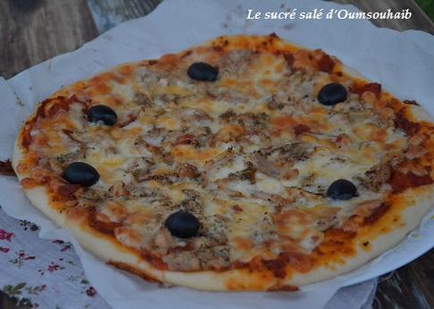 pizza kebab 1