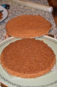 entremet chocolat praliné noisette 6