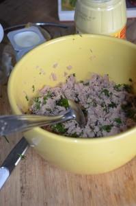 rillettes de thon à la crème fraiche 2